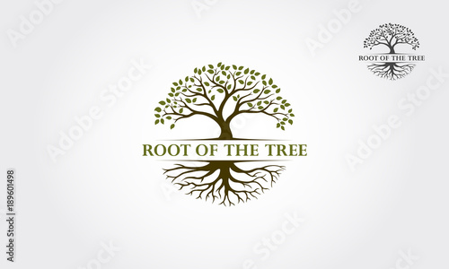 Photo Root Of The Tree logo illustration. Vector silhouette of a tree.