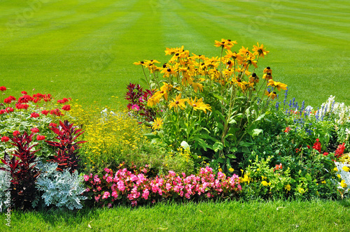 Photo Summer flowerbed and green lawn.