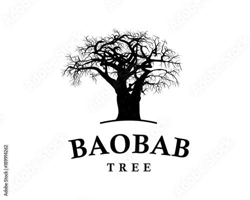 Carta da parati Line Art Baobab Tree Illustration Vintage Logo Vector