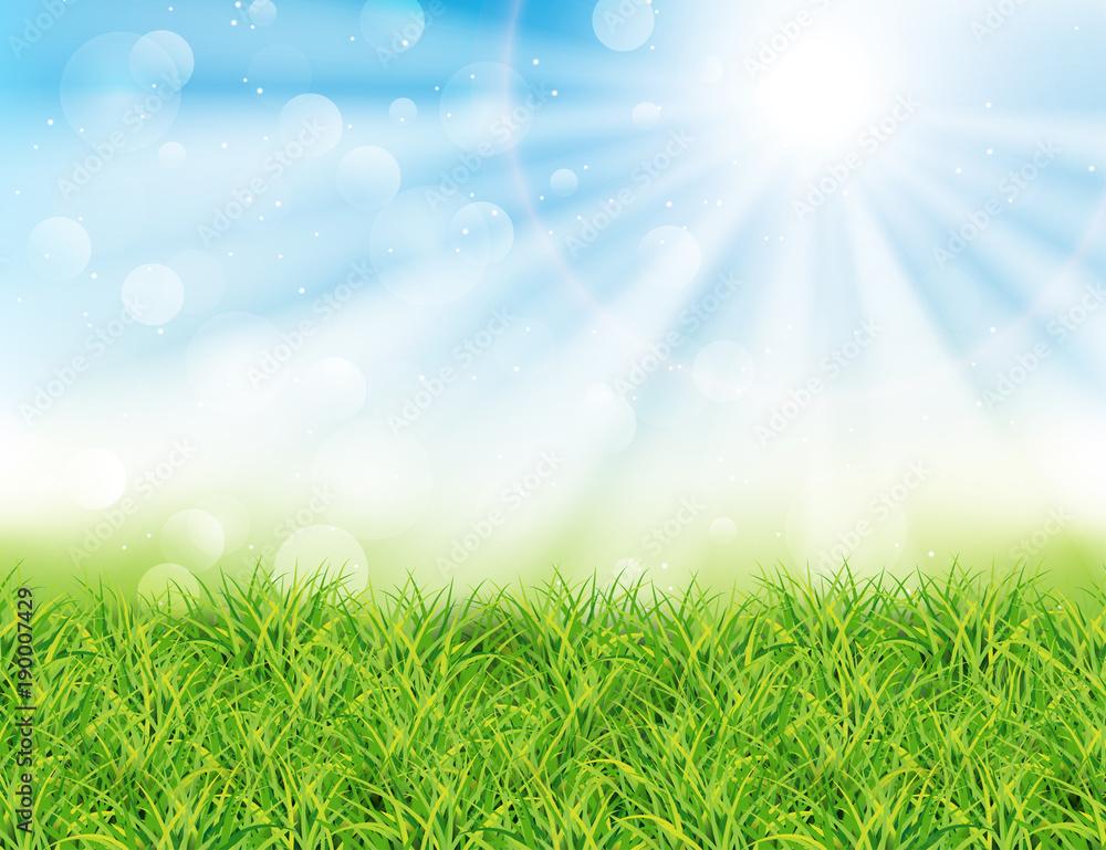 Wiosny lub lata słonecznego dnia wektoru ilustracja. Zielona trawa, promienie słońca i bokeh <span>plik: #190007429 | autor: Meranna</span>