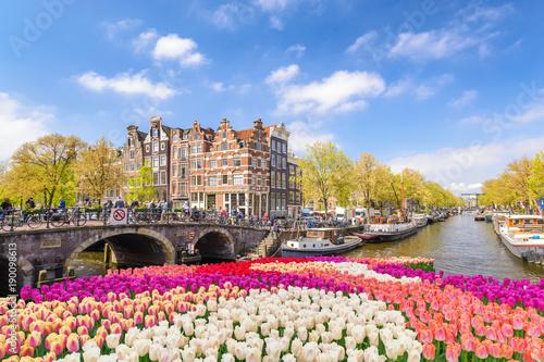 Fototapeta premium Amsterdam miasto linia horyzontu przy kanałowym nabrzeżem z wiosna tulipanowym kwiatem, Amsterdam, Holandia