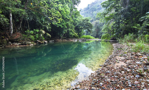 Canvas Print The Bladen River flows through one of the most biodiverse and untouched pieces of land in Central America