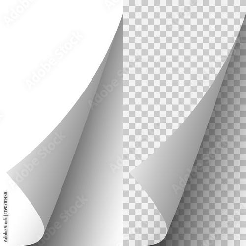 Fotografie, Obraz Vector white realistic paper page corner