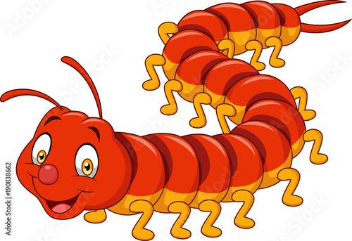 Cuadros en Lienzo Cartoon centipede isolated on white background