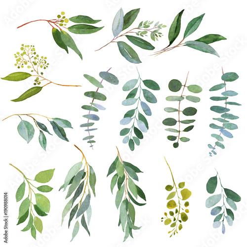 Canvas Print Wedding greenery twigs. Watercolor illustrations