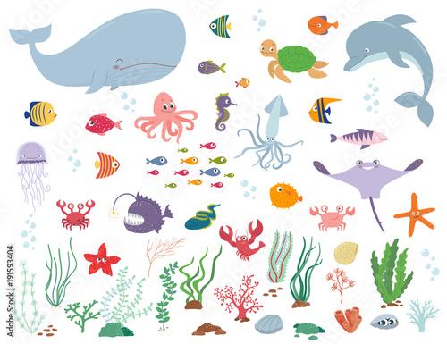 Fototapeta premium Zwierzęta morskie i rośliny wodne. Ilustracja kreskówka wektor
