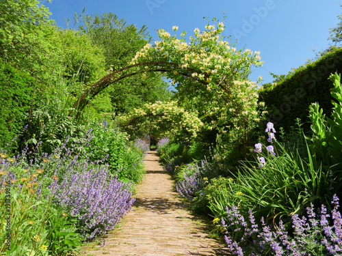 Foto Honeysuckle arches over a garden path  on a sunny day in an English country Garden, UK