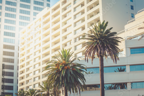 Santa Monica office buildings with palms