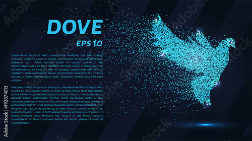 Fotografering The dove of the particles
