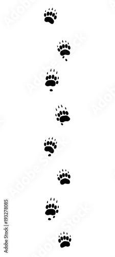 Fotografía Badger tracks