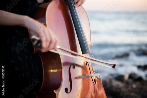 Photo Detail of girl with her cello on the outside