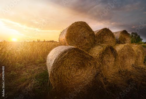 Fotografie, Tablou Hay roll bales on countryside fields