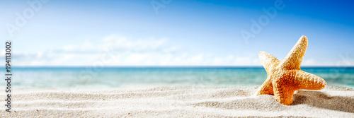 Obraz na plátně Shell on sand and summer time