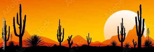 Valokuvatapetti Mexico desert sunset. The stony desert