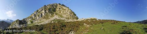 Karstfelsen im Nationalpark Covadonga / Spanien
