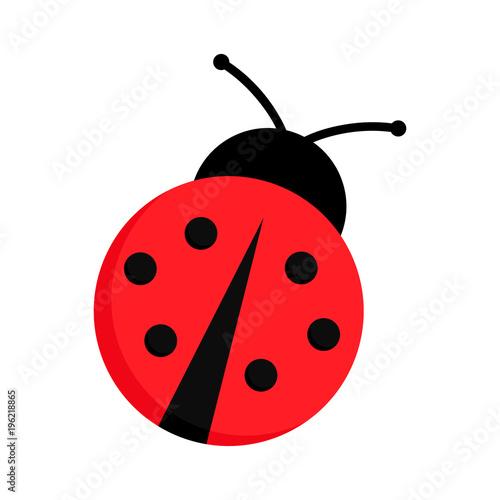 Fototapeta premium Biedronka lub biedronka wektor graficzny ilustracja na białym tle. Ładny prosty płaski kształt chrząszcza pani czarny i czerwony.