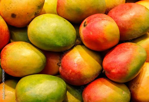 Canvas Print lot of red fresh mango fruits