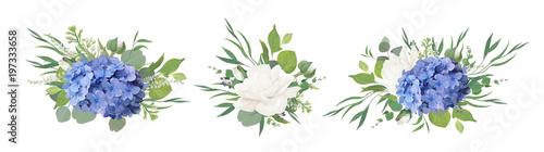 Fotografia, Obraz Vector floral bouquet design: blue hydrangea flower, garden peony Rose, anemone poppy, ranunculus bud, white lilac, eucalyptus branches & greenery leaves