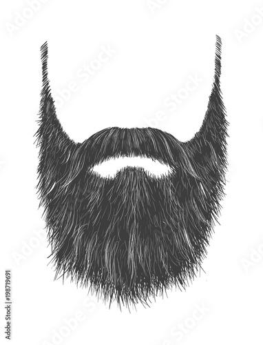 Fotografia Long Gray Beard