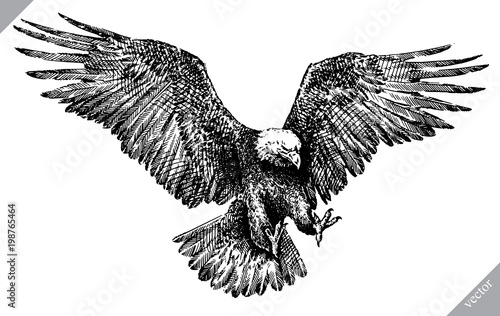 Stampa su Tela black and white engrave isolated eagle vector illustration