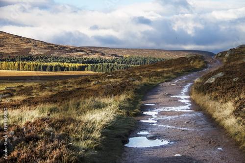 Scottish landscape in Cairngorms National Park Fototapeta