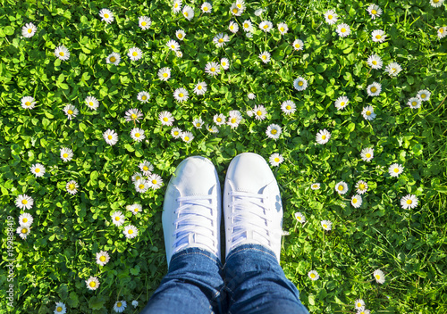 Legs in jeans and white sports lace up sneakers shoes on green meadow with grass and camomiles (daisies). Spring season wellness concept.