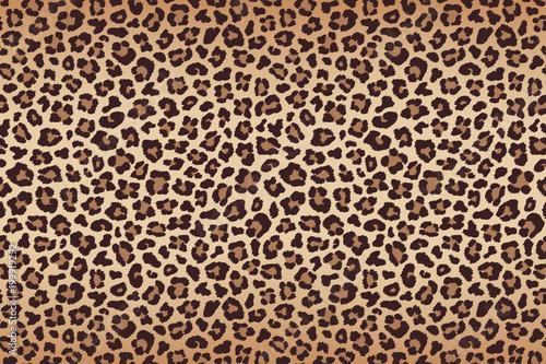 Canvas Print Leopard fur beige brown texture with dark border. Vector