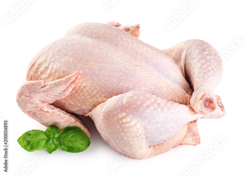 Fresh raw chicken and basil isolated on white background.