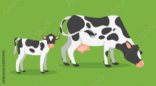 Tableau sur Toile cow with calf