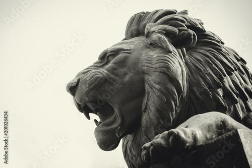 Wallpaper Mural Statue of a lion muzzle in profile