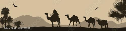 Karawana wielbłądów przechodzi przez pustynię