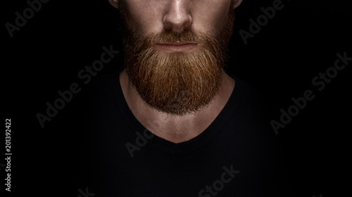 Fotografie, Obraz Perfect beard