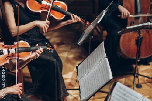 Carta da parati Elegant string quartet playing in luxury room at wedding reception in restaurant
