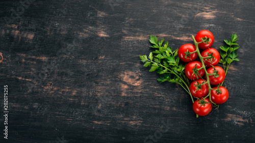 Fotografie, Obraz Cherry tomatoes on a twig