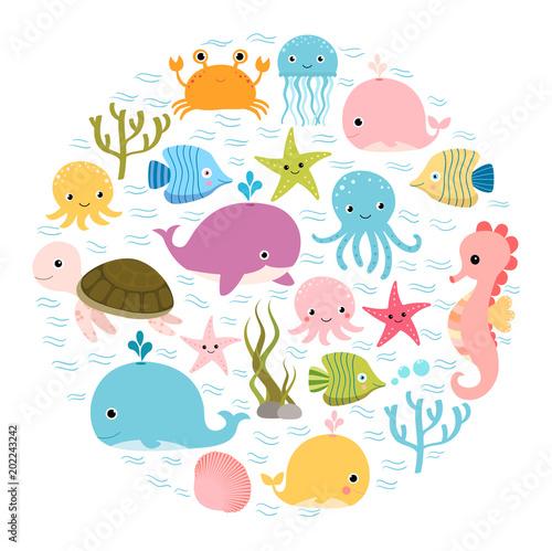Fototapeta premium Śliczne kolorowe animowane zwierzęta morskie w kółku na projekty dla dzieci, zaproszenia dla dzieci i letnie kartki z życzeniami