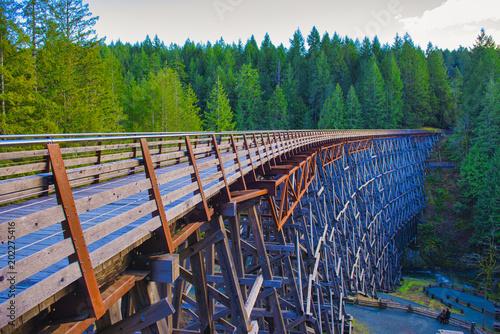 Wallpaper Mural Kinsol Trestle railroad bridge in Vancouver Island, BC Canada.