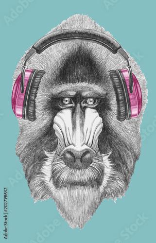 Fototapeta premium Portrait of Mandrill with headphones, hand-drawn illustration