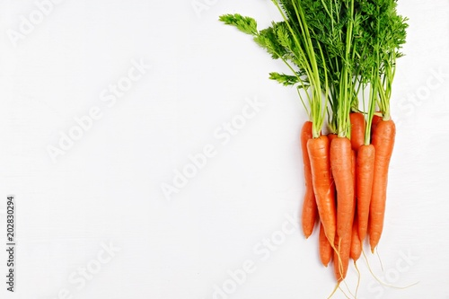 Bunch of carrots on the white background isolated