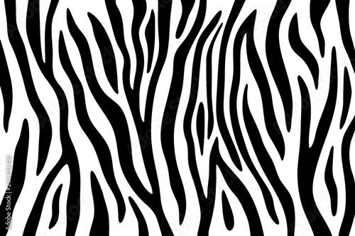 Zebra stripes black and white abstract background. Fototapeta