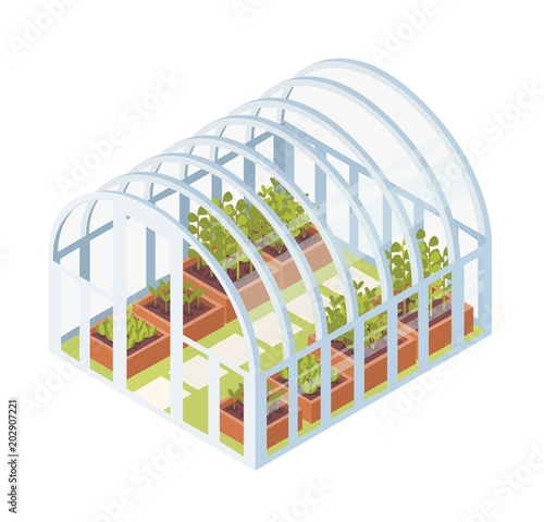 Canvas-taulu Green seedlings, sprouts or plants growing inside glass greenhouse