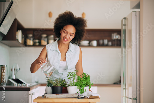 Carta da parati Beautiful mixed race woman gardening fresh herbs at her kitchen.