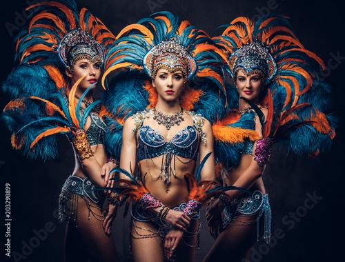 Leinwand Poster Group of a sexy girls in a colorful sumptuous carnival feather suit