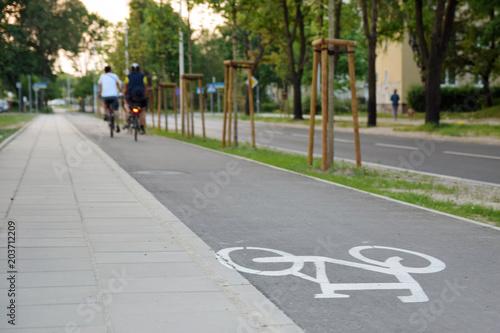 Bicycle road sign on asphalt. Ciąg pieszo-rowerowy.
