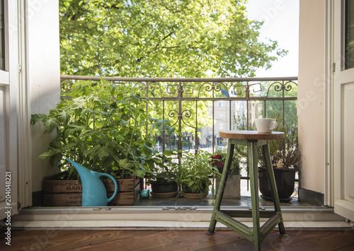 Fotografia, Obraz Urban Gardening
