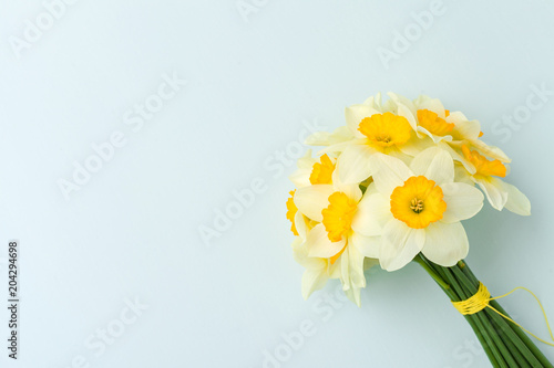 Spring flowers daffodil bouquet - top view of white narcissus on blue pastel background with copy space.