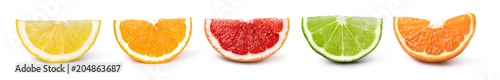 Foto citrus fruit set