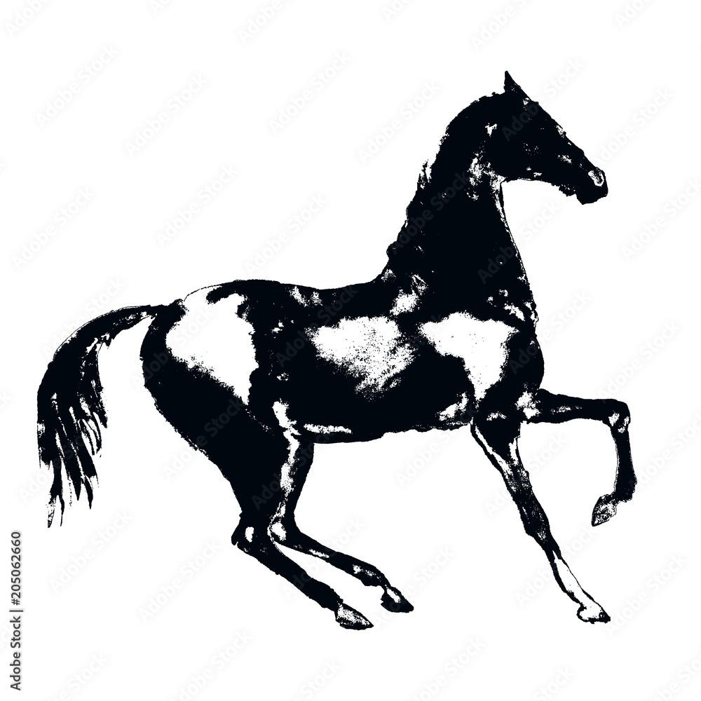 Czarna końska sylwetka z ręka rysunku grunge artystyczną teksturą. Styl sztuka wektor. Sport konny ilustracja. <span>plik: #205062660 | autor: larisa_zorina</span>