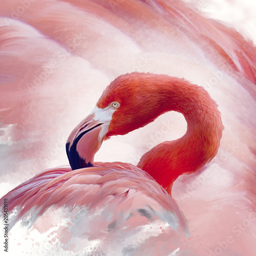 Malarstwo akwarela flamingo