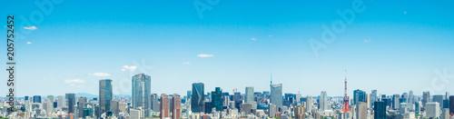 Obraz na płótnie Rozległy krajobraz Tokio