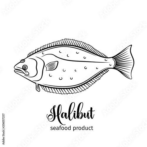 Slika na platnu Vector halibut